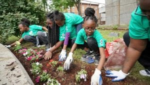 Comcast Cares Day volunteers gardening